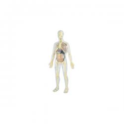 Juego miniland anatomia...